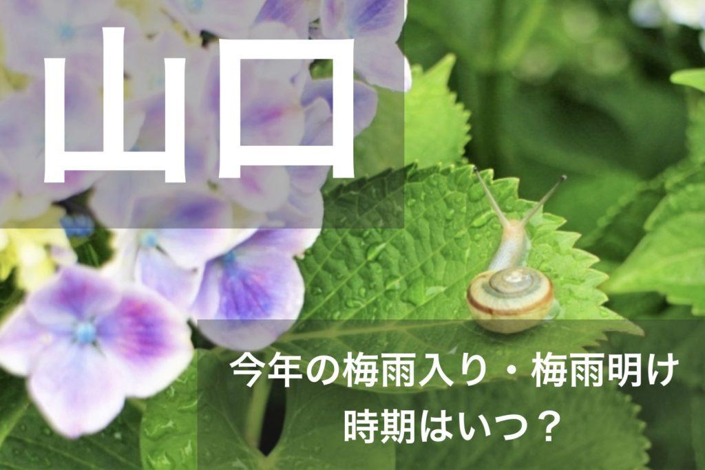 yamaguchi-tsuyu