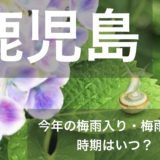kagoshima-tsuyu