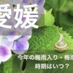 愛媛県(四国地方)2021年の梅雨入りと梅雨明け宣言はいつ?例年の時期や傾向も!