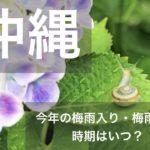 沖縄県2020年の梅雨入りと梅雨明け宣言はいつ?平年の時期や傾向も!