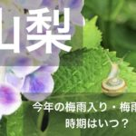 山梨県(関東甲信地方)2019年の梅雨入りと梅雨明け宣言はいつ?平年の時期や傾向も!