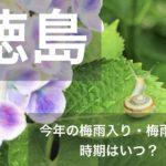 徳島県(四国地方)2021年の梅雨入りと梅雨明け宣言はいつ?例年の時期や傾向も!