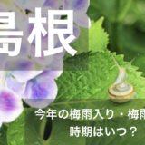 shimane-tsuyu