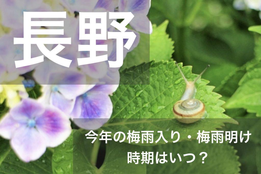 nagano-tsuyu