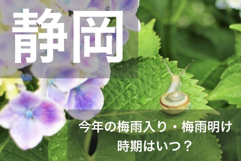 shizuoka-tsuyu-01