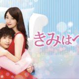 kimihapetto-01